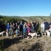 Actividades con perro y curso adiestramiento canino 2016