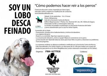 cartel seminario Murcia