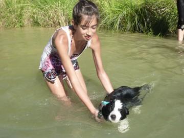Actividades con perros en valencia