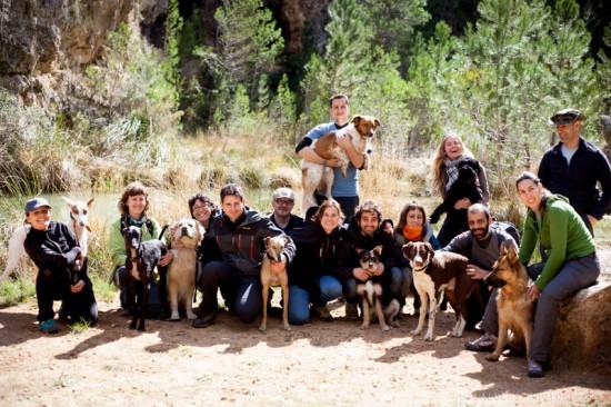 actividades perros naturaleza lobo descafeinado (1)