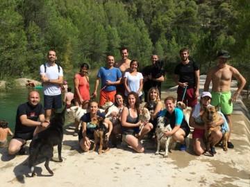 actividades perros naturaleza lobo descafeinado (7)