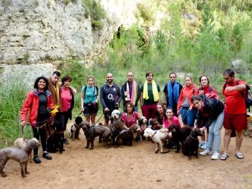 actividades perros naturaleza lobo descafeinado (6)