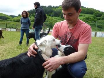 Curso adiestramiento canino Navelgas Asturias (5)