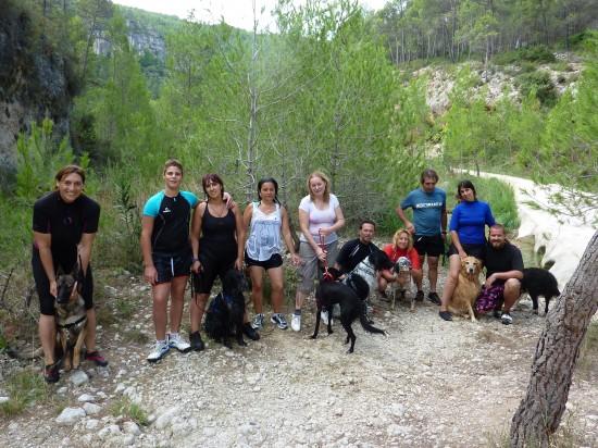 actividades con perro educación canina en grupo lobo descafeinado (5)