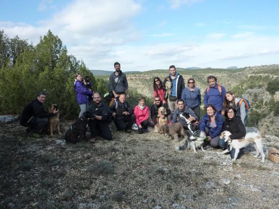 actividades con perro educación canina en grupo lobo descafeinado (3)