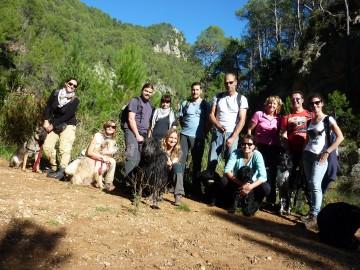 Actividades con perro y curso adiestramiento canino 2015 (2)
