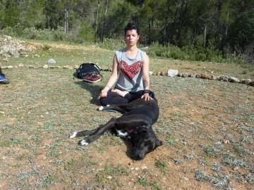 curso-de-meditacion-con-perro-en-valencia (1)