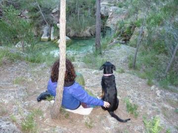 curso-de-meditacion-con-perro-en-valencia (5)