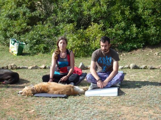 curso-de-meditacion-con-perro-en-valencia (2)