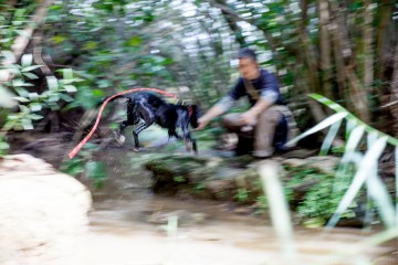 actividades-con-perro-curso-adiestramiento-canino-Valencia (4)