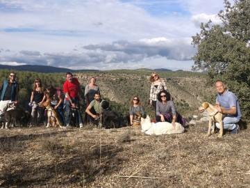 Actividades con perro y curso de adiestramiento canino 2017 (5)