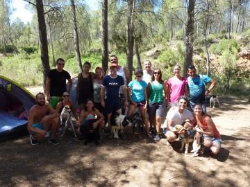 Actividades con perro y curso adiestramiento canino 2016 (4)