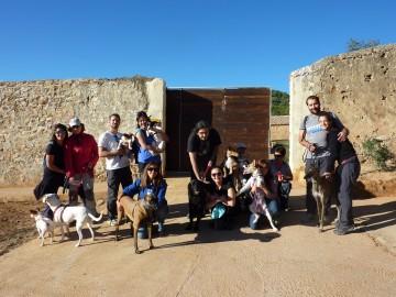 Actividades con perro y curso adiestramiento canino 2016 (2)