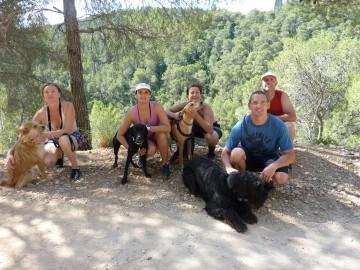 Actividades con perro y curso de adiestramiento canino 2017 (2)