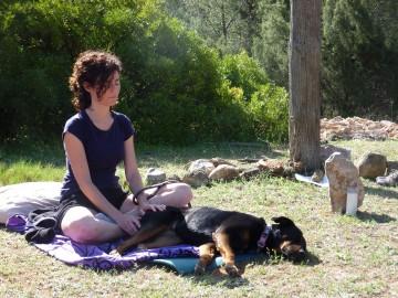 meditación y yoga con perro - Lobo descafeinado