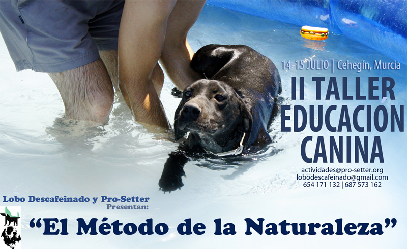 II Taller de Educación Canina Lobo Descafeinado y Pro-Setter