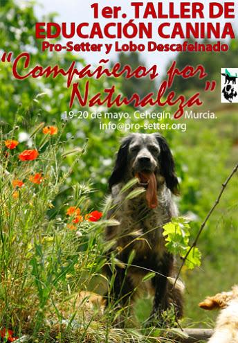 I Taller de Educación Canina Lobo Descafeinado y Pro-setter