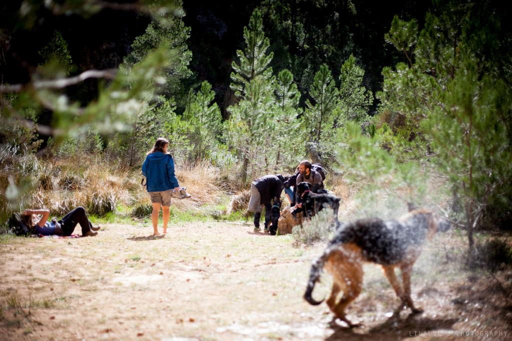 Perros al agua 2 – Barranquismo y acampada canina