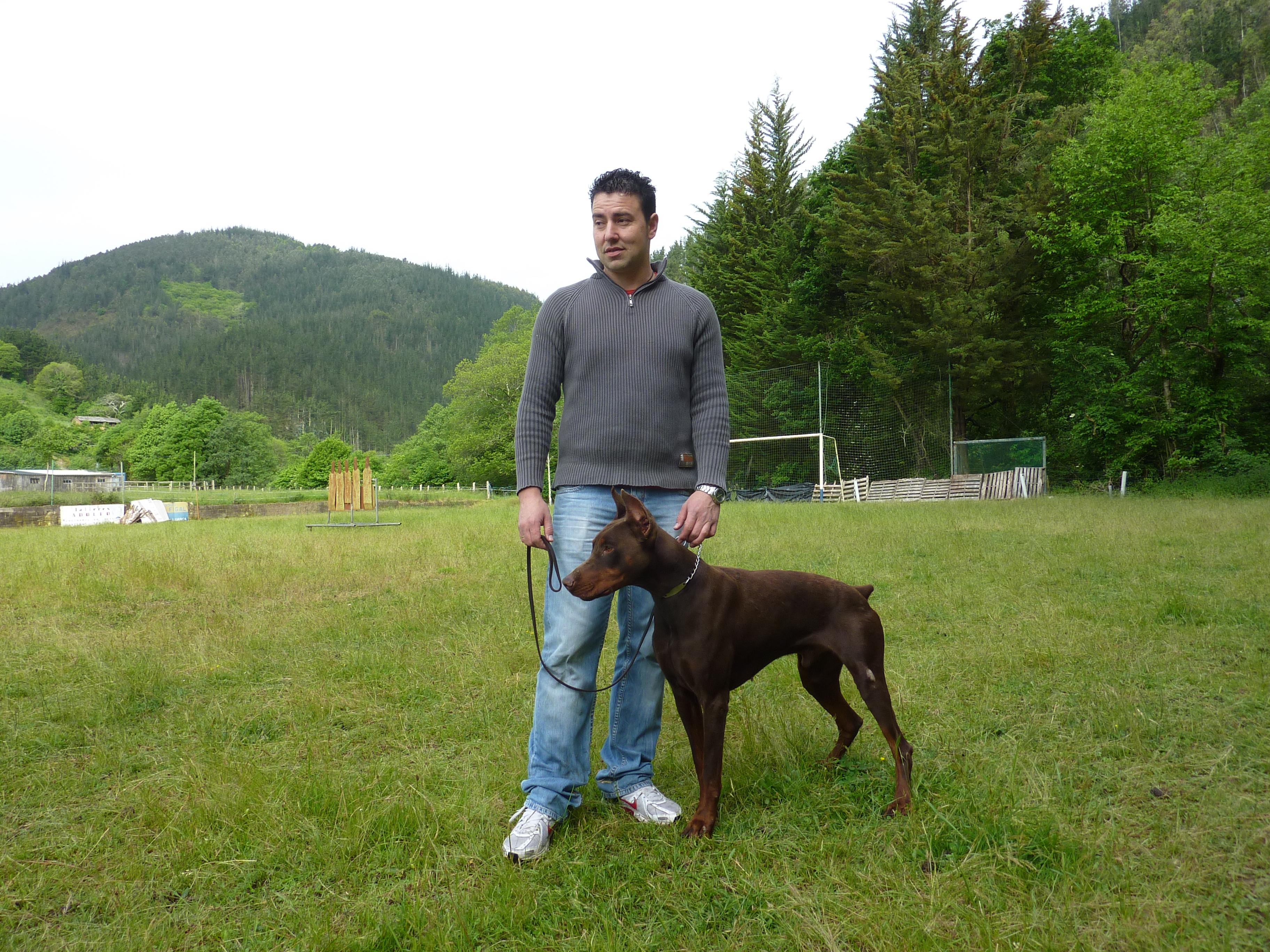 Curso adiestramiento canino Navelgas Asturias (2)