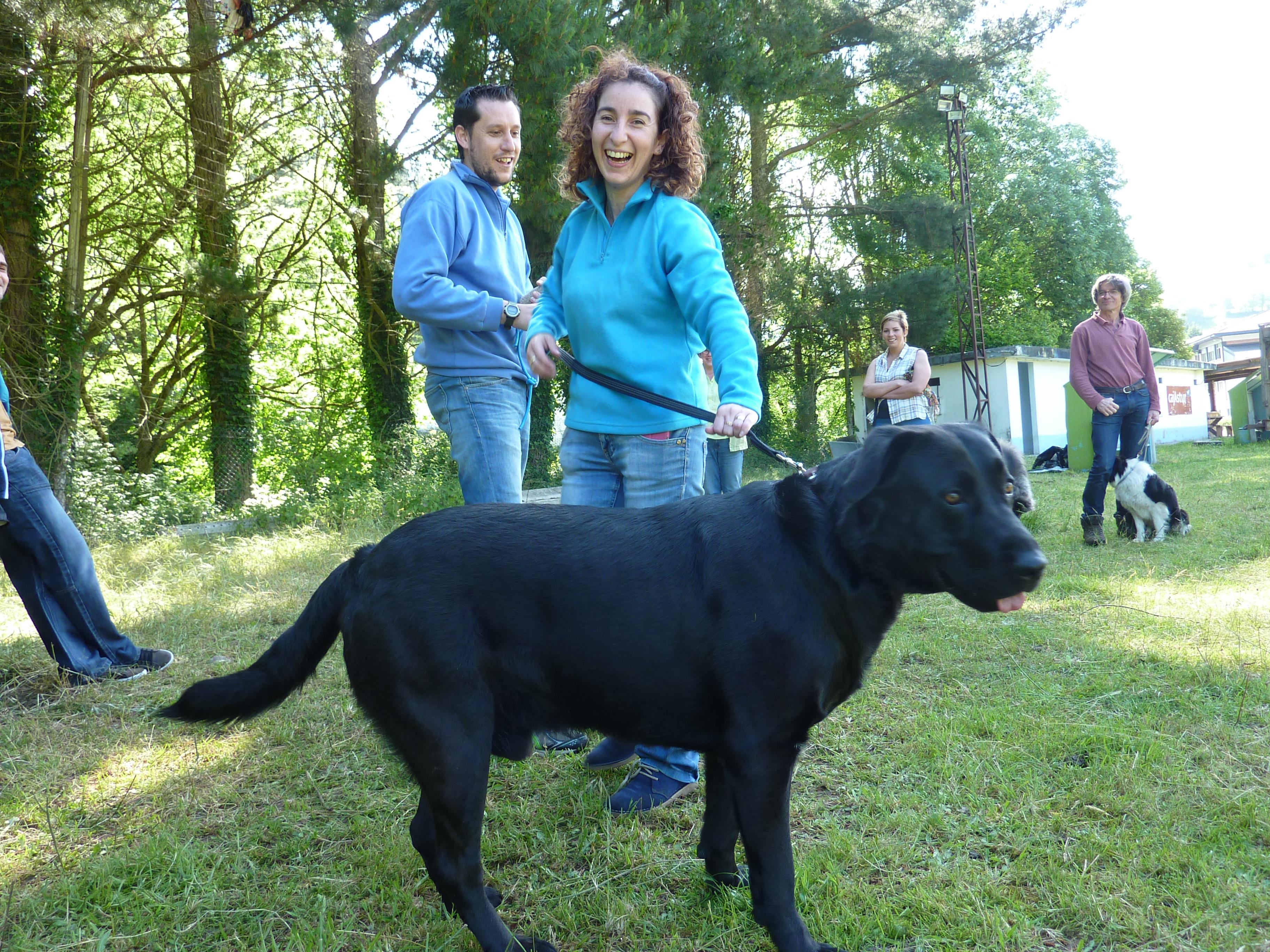 Curso adiestramiento canino Navelgas Asturias (6)