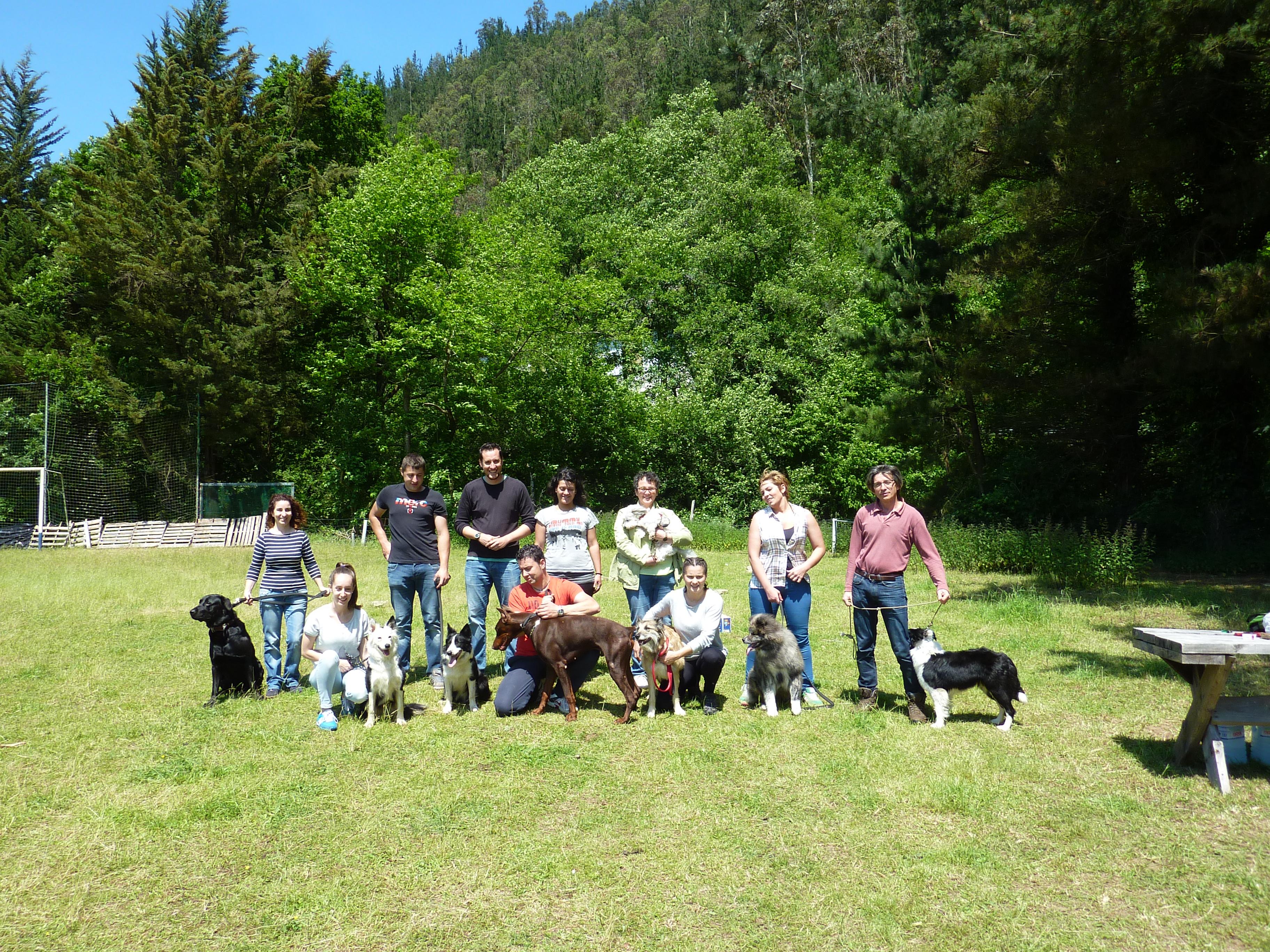 Curso adiestramiento canino Navelgas Asturias (7)