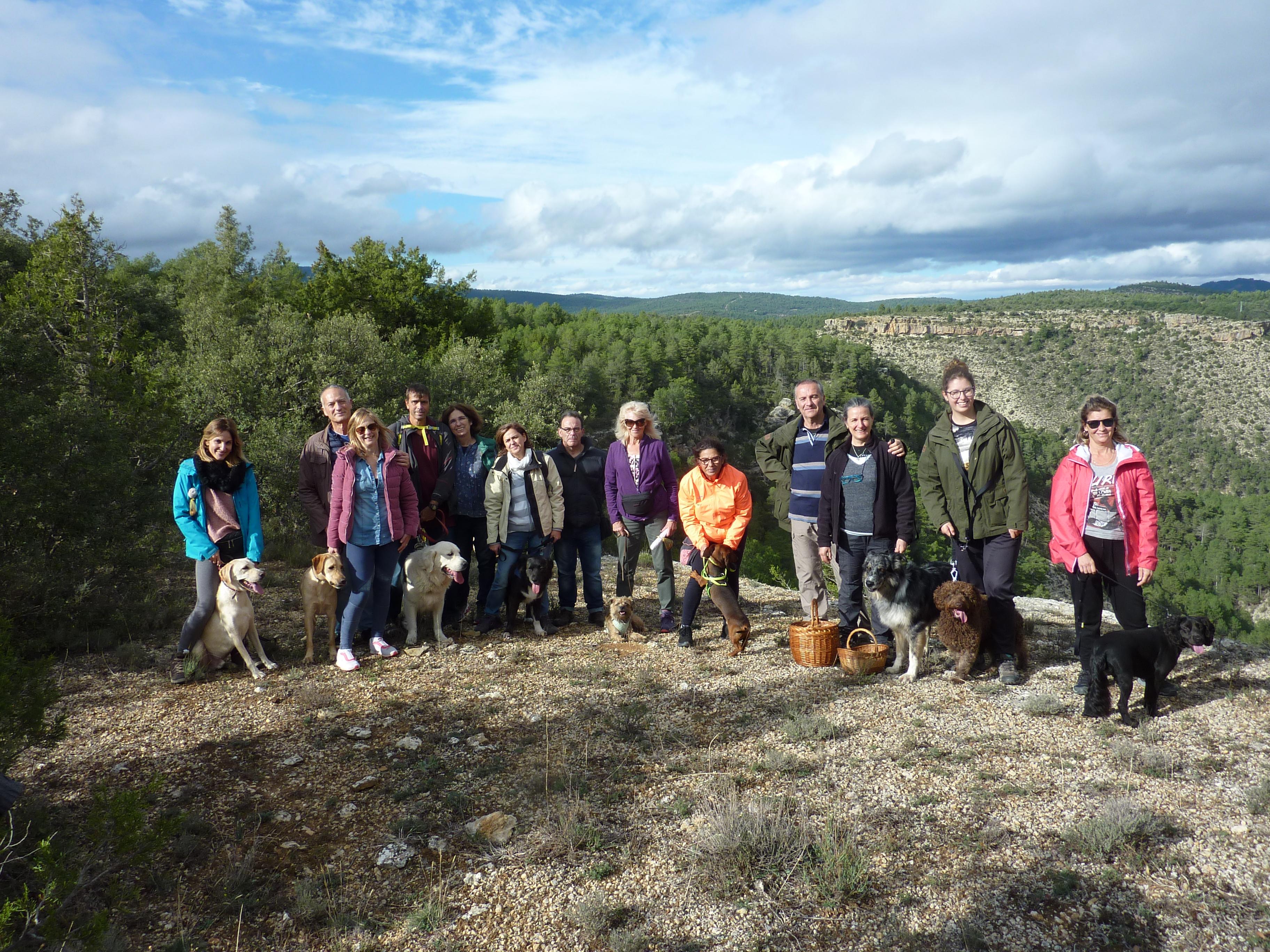 Actividades con perro y curso de adiestramiento canino 2019
