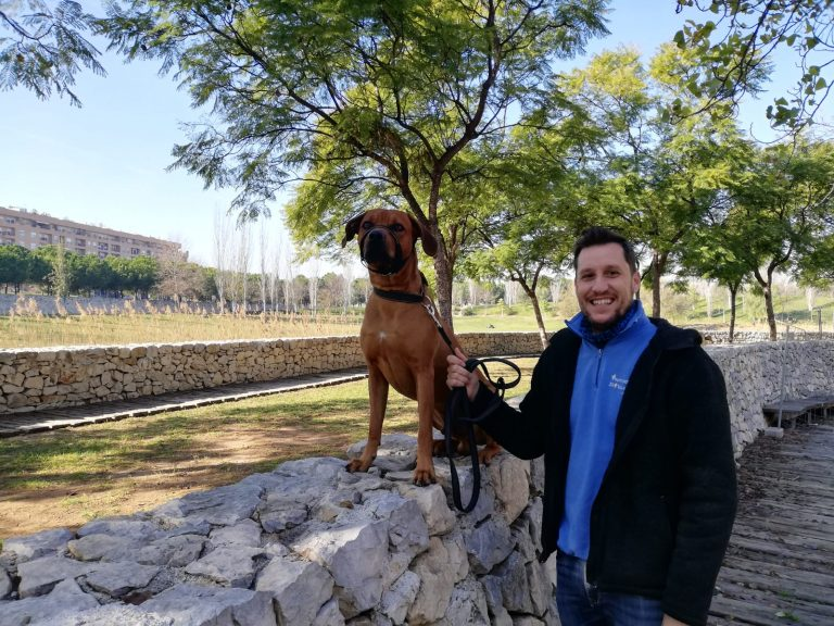 Un León enjaulado – Adiestramiento y educación a domicilio en Valencia – Peleas perros